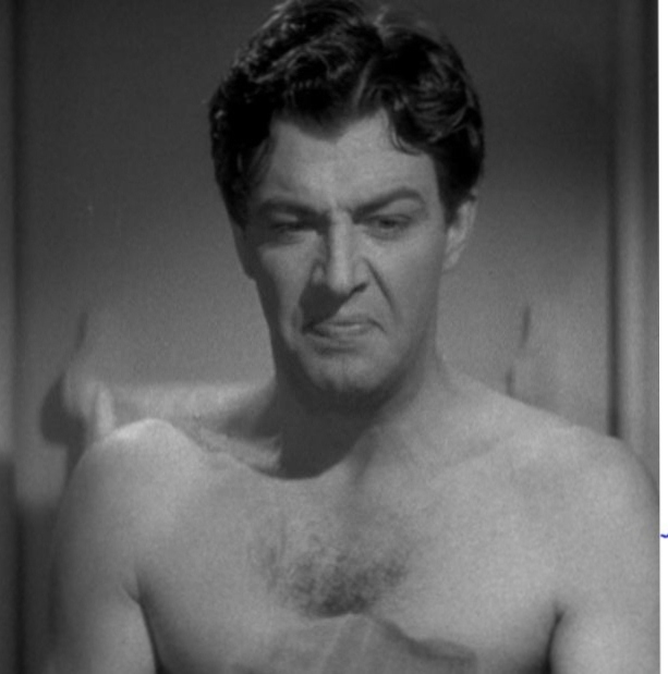 Robert Taylor: the Harried Chest | Robert Taylor Actor